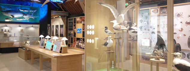 Éclairage LED musée maritime de Tatihou
